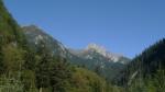 Valle alpino