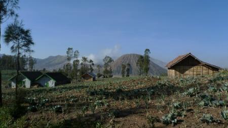 Tierras fertiles en las laderas de la caldera volcanica