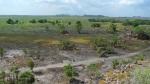 Kakadu, zonas inundables en Ubir