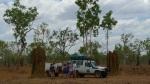 Termiteros gigantes