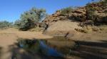 El supuesto manatial que da nombre a Alice Springs