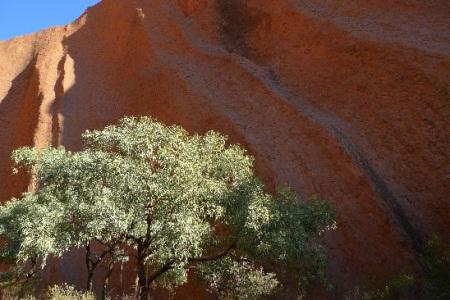 Ulurú