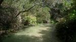 Rio interior de aguas frescas sobre un lecho de arena