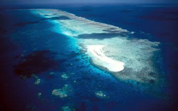 Vista aerea del cayo Michaelmas cay