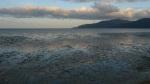 Marea baja en Cairns